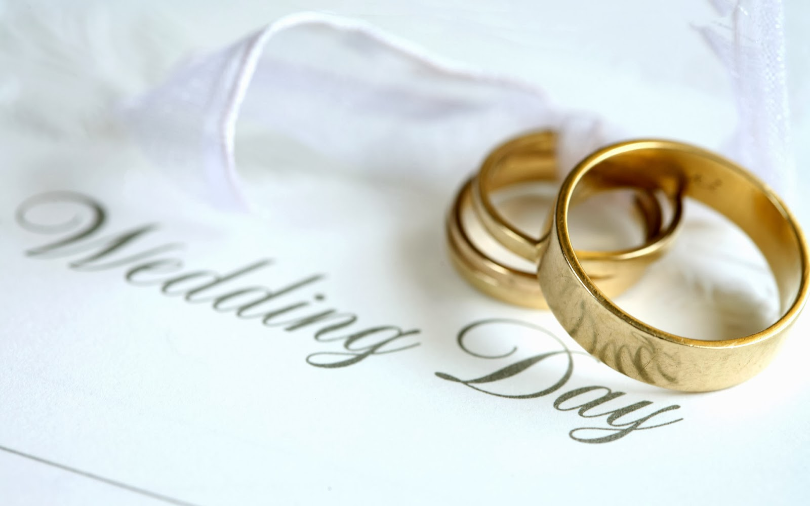 Düğün Telaşı